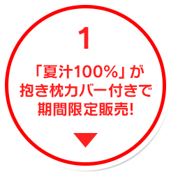 「夏汁100%」が抱き枕カバー付きで期間限定販売!