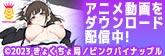 萌えるエロス!人気アダルトアニメ動画をダウンロード販売!