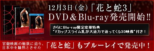 12��3��ʶ�ˡز֤ȼ�3��DVD&Blu-rayȯ�䳫�ϡ���