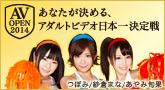 AV OPEN2014 「あなたが決める、アダルトビデオ日本一決定戦」