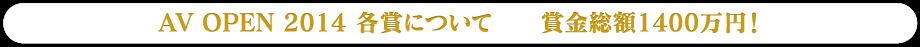 AV OPEN 2014各賞について