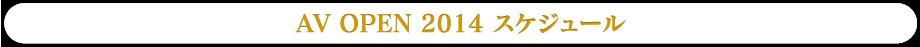 AV OPEN 2014スケジュール