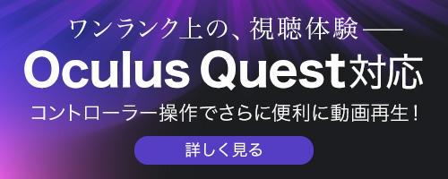 Oculus Quest リリース