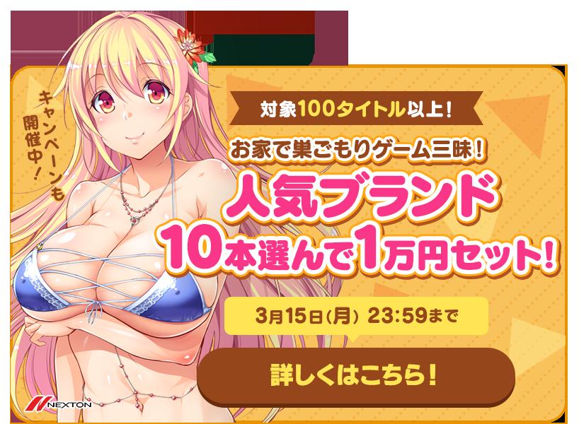 お家で巣ごもりゲーム三昧!人気ブランド10本選んで1万円セット!